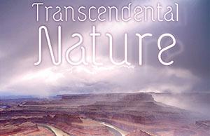 Transcendental Nature