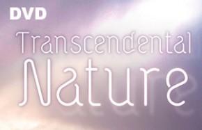 Transcendental Nature - DVD